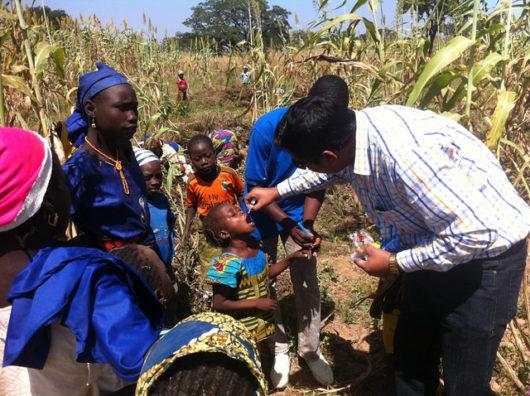 Crop fields Nigeria