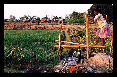 Irrigation_Poverty