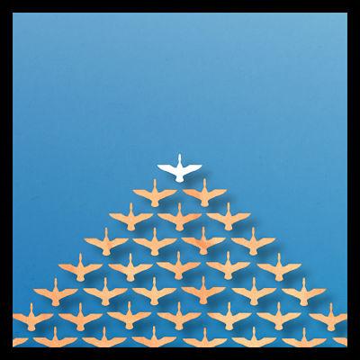 birds_flying_geese