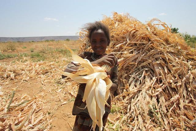 sustainable irrigation