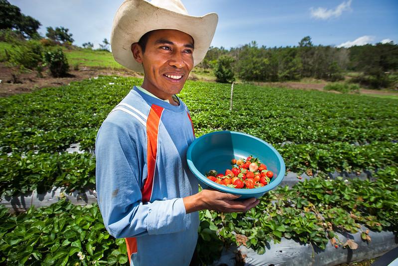 Honduras Uses U.S. Foreign Aid