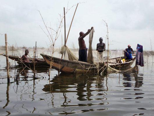 Diseases in Benin