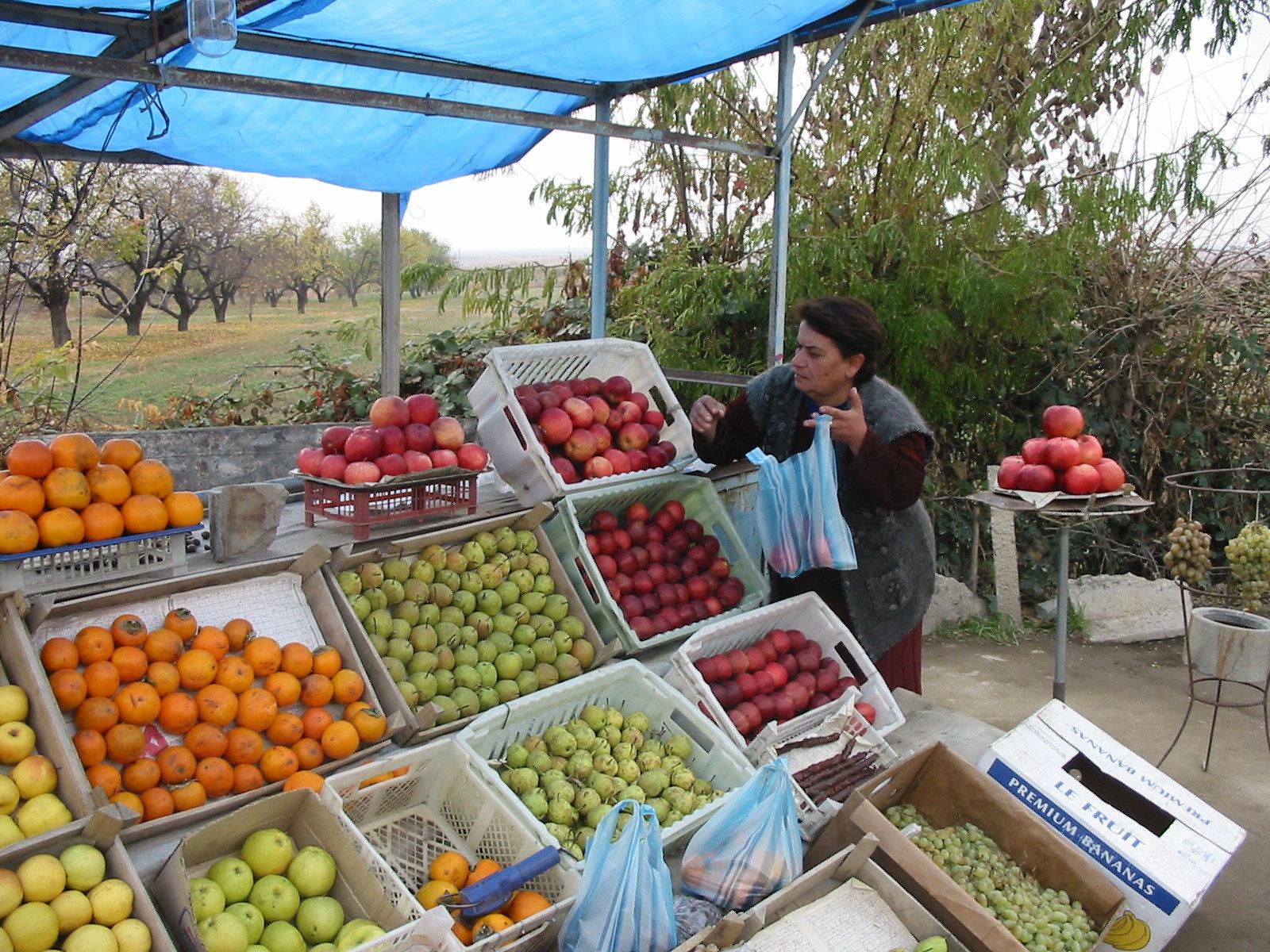 Malnutrition in Armenia