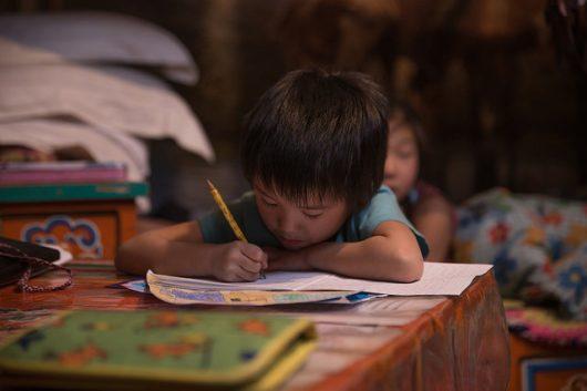 The Importance of Native-Language Instruction