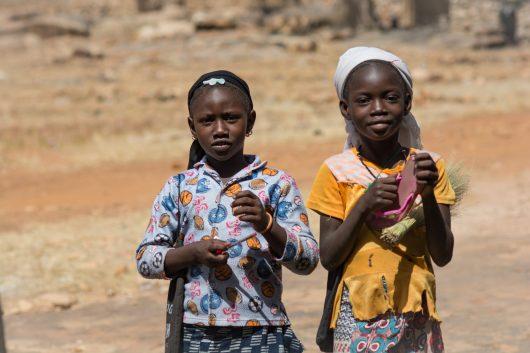 Humanitarian Aid to Mali