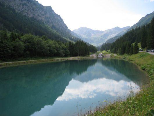 The Top Diseases In Liechtenstein