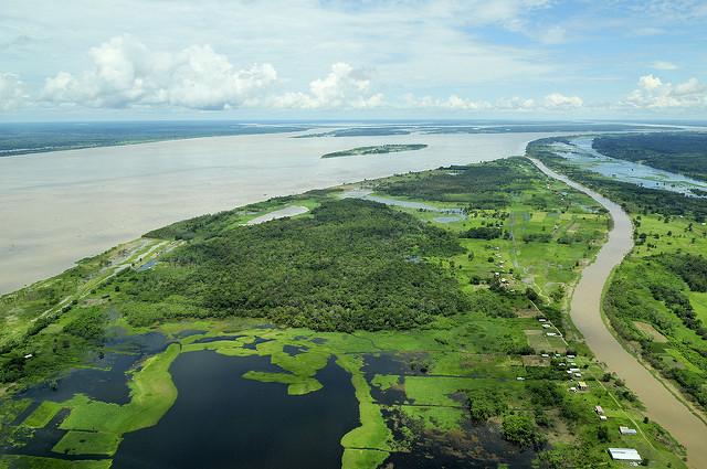 Indigenous Amazonian Tribe