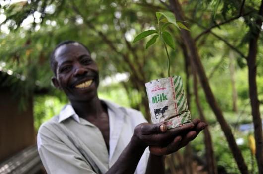 Democratic Growth in Burkina Faso