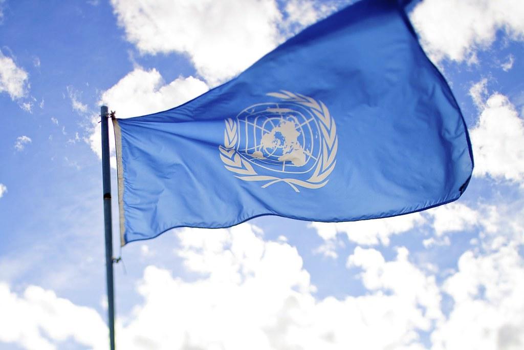 UNDP Goals