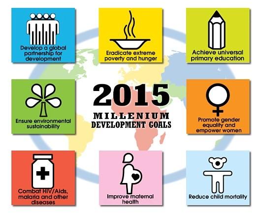 What Have the Millennium Development Goals Achieved?