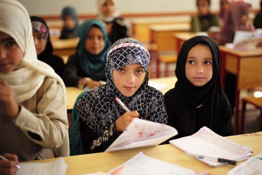 literacy in yemen