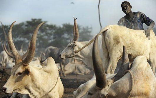 Aid to South Sudan