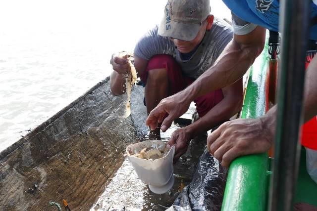 Aquaculture in Nicaragua