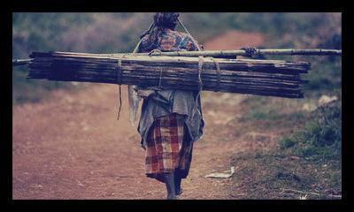 Bamboo_Ethiopia
