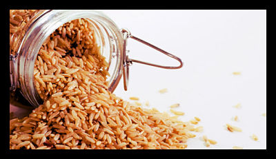 The Role of Rice in the Fight Against Poverty