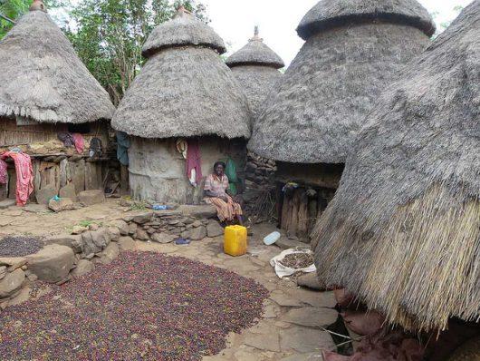 Coffee market in Ethiopia