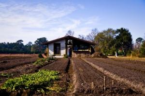 Decade of Family Farming
