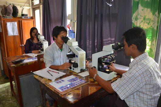 Diseases in Burma