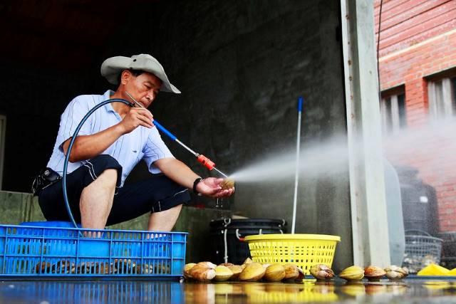 Drought In Taiwan