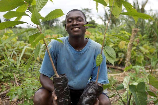 Ending Child Labor in cocoa