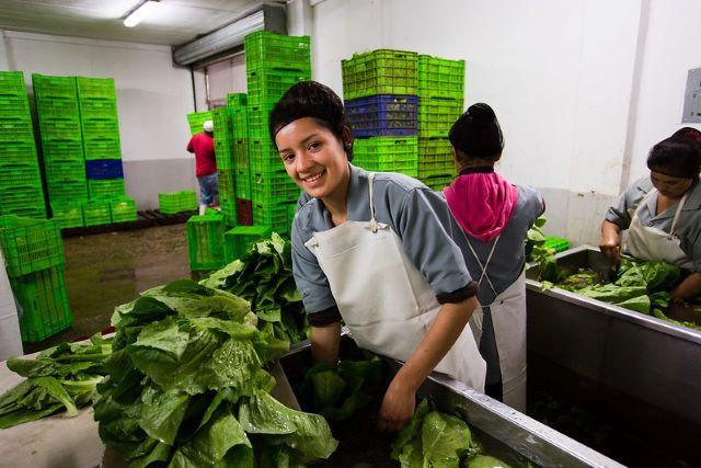 Expanding El Salvador's Markets