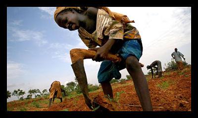 Family_Farming_Poverty