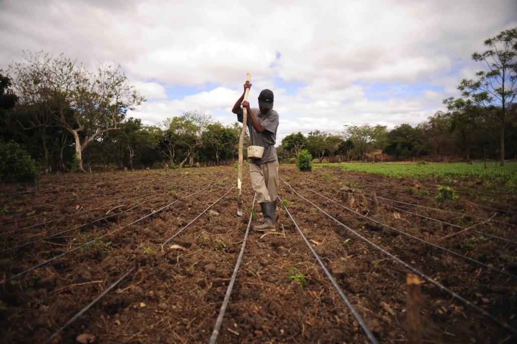 Farming Methods in Central America