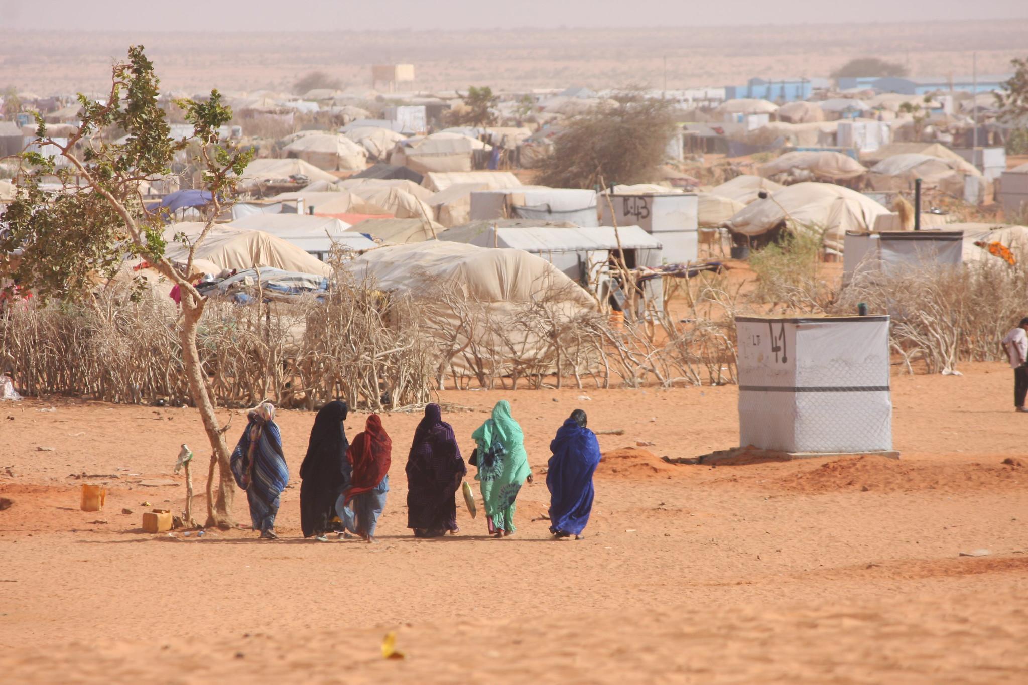 Fleeing Eritrea