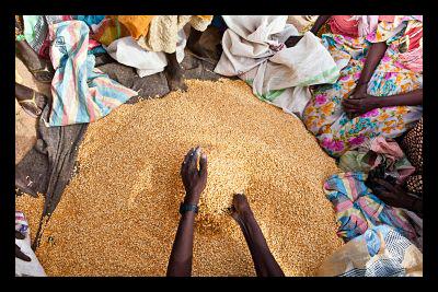 Food Aid to Yemen