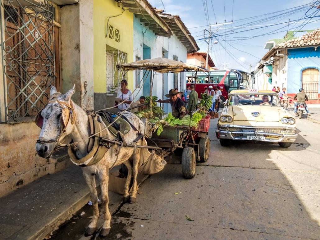 Food Security in Cuba