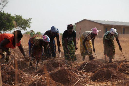 Food Security in Ghana