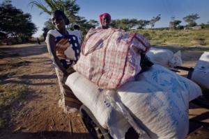 Foreign Aid in sub-Saharan Africa