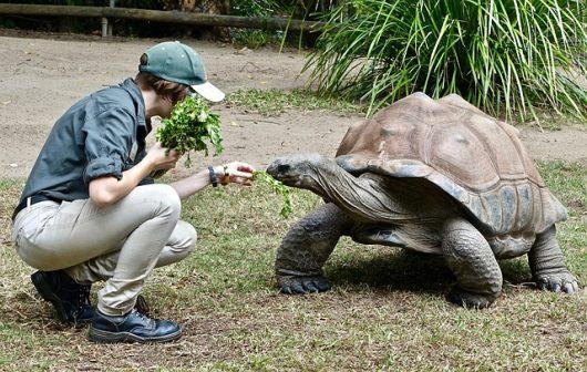 Galapagos tourism reduces poverty