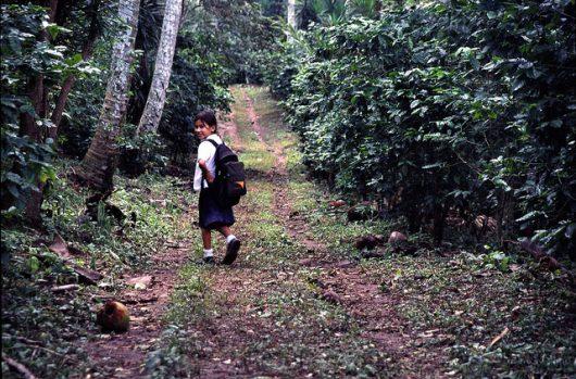 Girls' Education in El Salvador