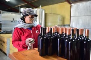 grape industry