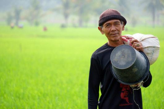 Healthcare Improvements Indonesia