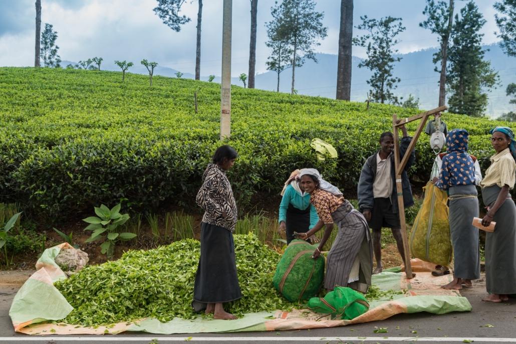 Healthcare in Sri Lanka