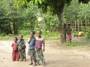 The Ethiopian Education System
