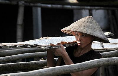 Human Rights in Vietnam