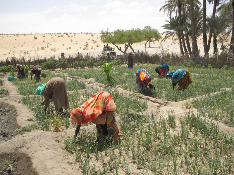 hunger in Chad