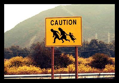 Immigration_Report_International_Organization_Migration