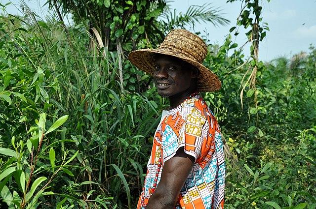 Improve Agriculture in Africa