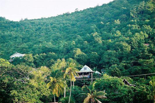 Jamaica's Farmland