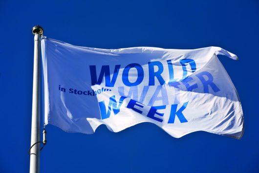 Joan Rose: World Water Week's Champion