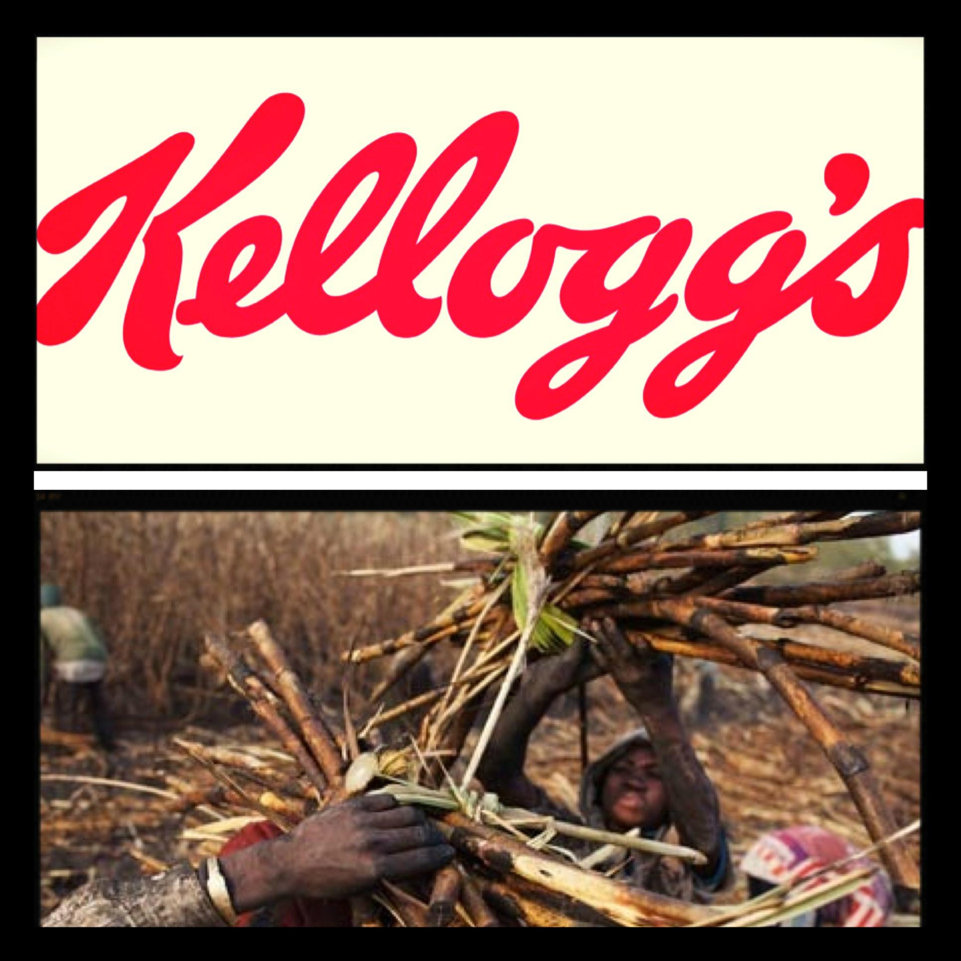Kellogg's Falls Short