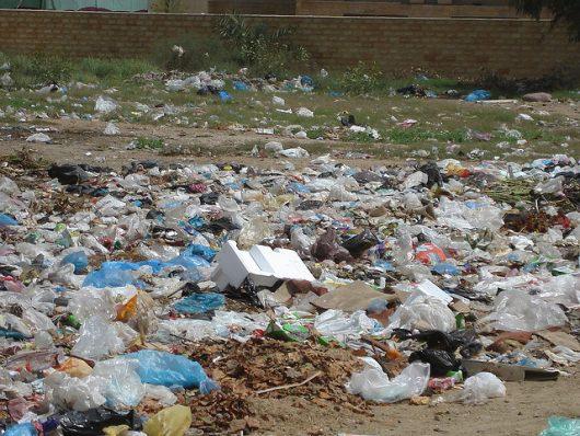 Kenya's Plastic Bag Ban