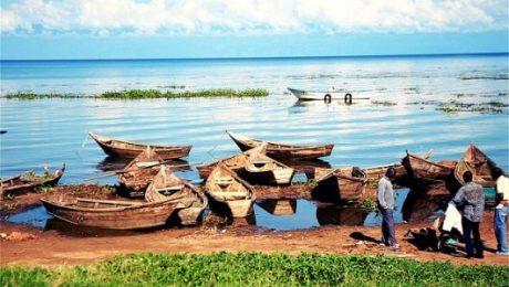 Lake Victoria's Failing State
