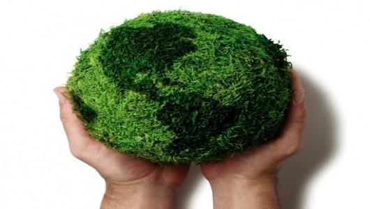 Why We Should Value Biodiversity-TBP