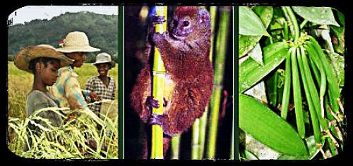 Madagascar_Ecotourism