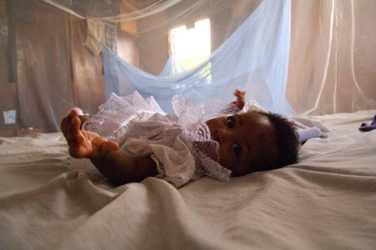 Malaria Box May Hold the Key to Defeating Malaria